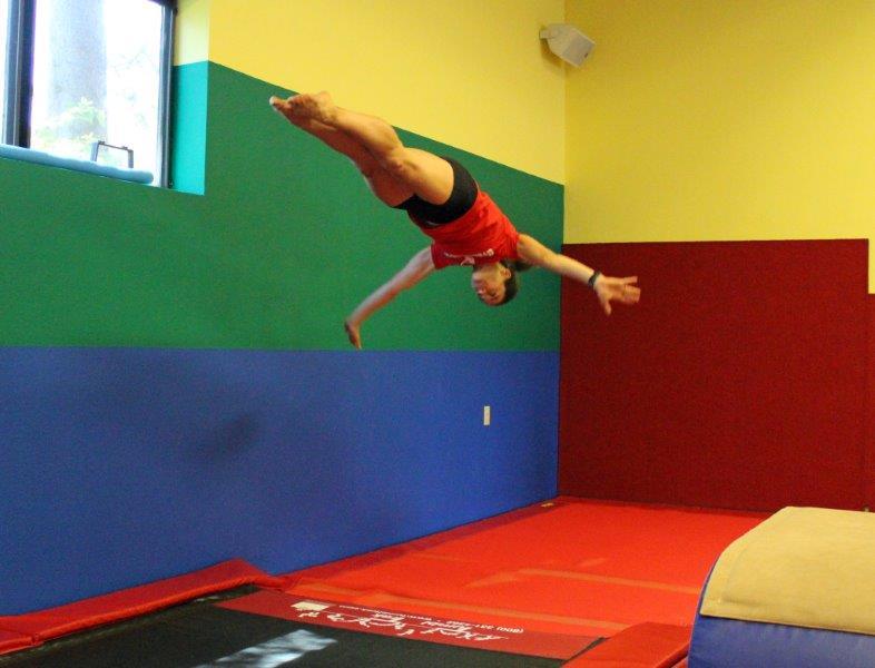 The Adult gymnastics lessons